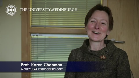 Thumbnail for entry Research in a nutshell - Professor Karen Chapman