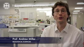 Thumbnail for entry Andrew Millar - Biological Sciences- Research In A Nutshell - School of Biological Sciences -03/03/2013