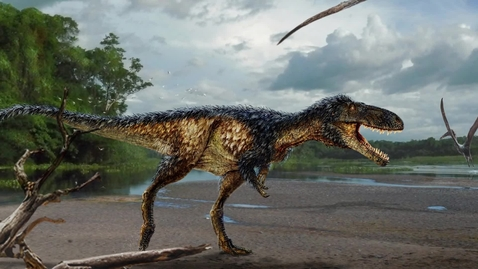 Thumbnail for entry New Tyrannosaur Tells Story of how T. Rex got its Crown