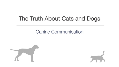 Thumbnail for entry Canine Communication (The Truth About Cats and Dogs MOOC)