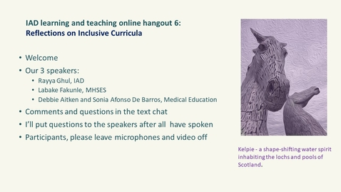 Thumbnail for entry IAD Learning and Teaching Online Hangout - Reflections on Inclusive Curricula