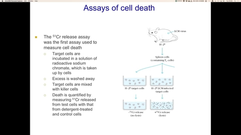 Thumbnail for entry Assays of cell death