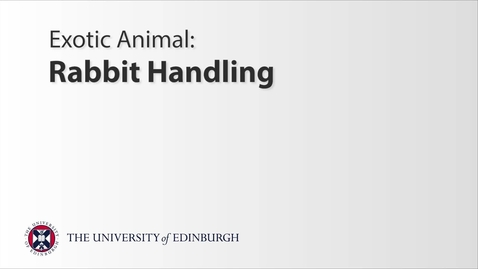 Thumbnail for entry Exotics: Rabbit Handling