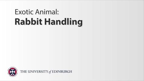 Thumbnail for entry Exotics: Rabbit Handling