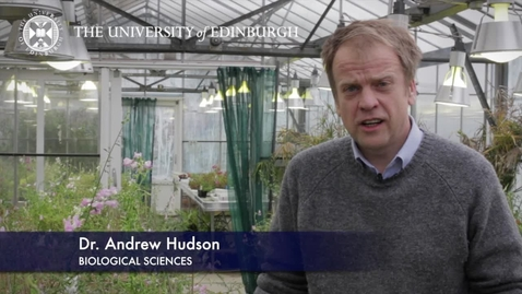 Thumbnail for entry Andrew Hudson - Biological Sciences- Research In A Nutshell - School of Biological Sciences -26/06/2012
