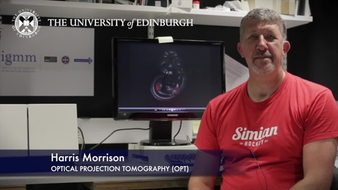 Thumbnail for entry Harris Morrison -Optical Projection Tomography (OPT) -Research In A Nutshell- MRC Institute of Genetic and Molecular Medicine-24/08/2012