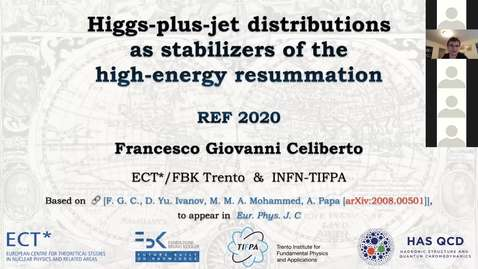 Thumbnail for entry REF2020: Francesco Giovanni Celiberto- Higgs-plus-jet distributions as stabilizers of the high-energy resummation