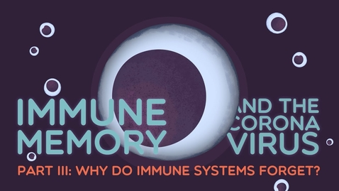 Thumbnail for entry Immune Memory & the Coronavirus Part III: Why do immune systems forget?