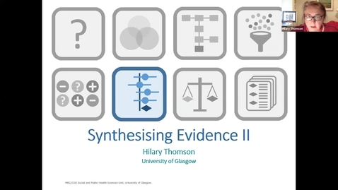 Thumbnail for entry Synthesising Evidence II - Hilary Thomson