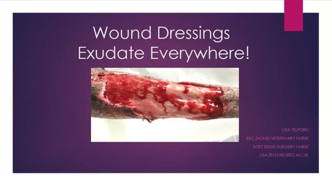 Thumbnail for entry Nurses Clinical Club - 31st March 2021 - Wound dressings - exudate everywhere!
