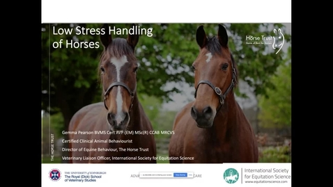 Thumbnail for entry Low stress handling horses