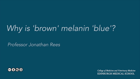 Thumbnail for entry Why is 'brown' melanin blue?