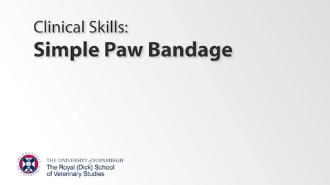 Thumbnail for entry Bandaging Class - Simple Paw Bandage