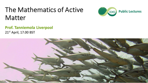 Thumbnail for entry Tannie Liverpool: The Mathematics of Active Matter