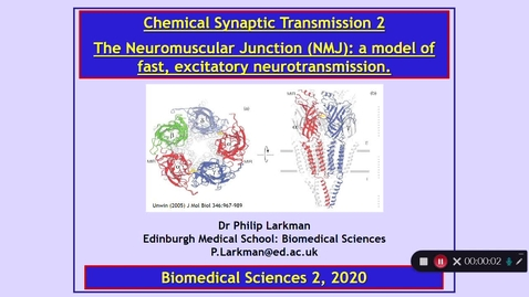 Thumbnail for entry BMS2: Chemical Synaptic Transmission 2 Part 1 Dr Phil Larkman