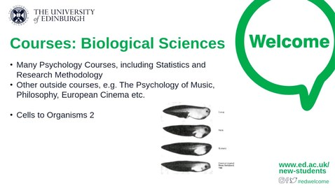 Thumbnail for entry Course Options Let's chat  Biological and Medical Sciences