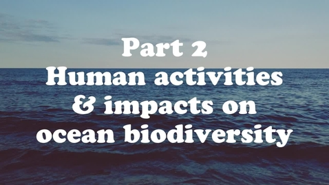 Thumbnail for entry Lesson 2: Ocean Biodiversity, Food Webs and Habitats