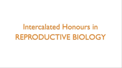 Thumbnail for entry Intercalated Honours in Reproductive Biology