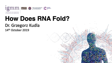 Thumbnail for entry How Does RNA Fold?