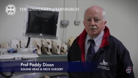 Thumbnail for entry Paddy Dixon -Equine Head & Neck Surgery - Research In A Nutshell - Royal (Dick) School of Veterinary Studies -02/08/2012