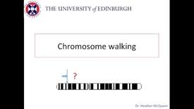 Thumbnail for entry Chromosome Walking