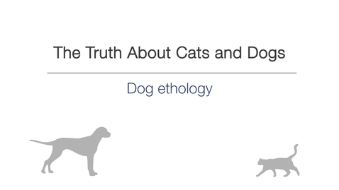 Thumbnail for entry Week 2 - Dog ethology