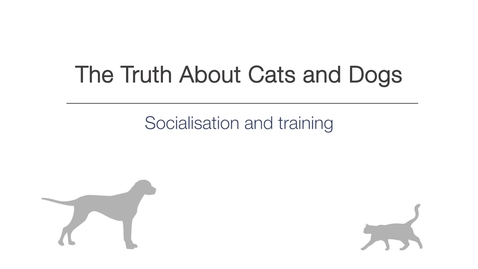 Thumbnail for entry Week 5 - Socialisation and training