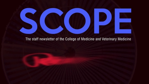 Thumbnail for entry SCOPE newsletter review of the year 2018