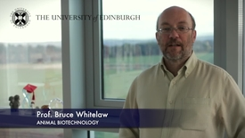 Thumbnail for entry Bruce Whitelaw - Animal Biotechnology- Research In A Nutshell - Royal (Dick) School of Veterinary Studies -03/12/2012