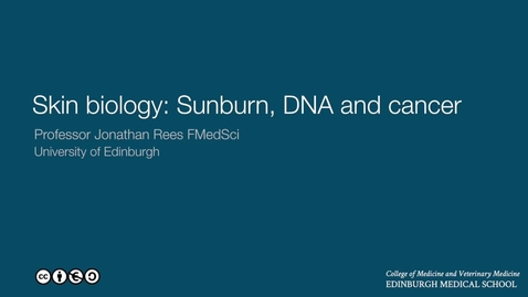 Thumbnail for entry Sunburn, DNA, and skin cancer.