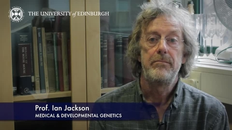 Thumbnail for entry Ian Jackson -Medical & Developmental Genetics - Research In A Nutshell- MRC Institute of Genetic and Molecular Medicine-21/05/2015