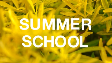 Thumbnail for entry LEAPS Summer School