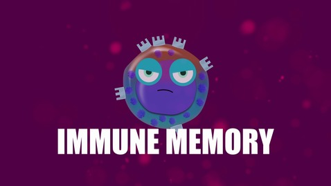 Thumbnail for entry Supercytes - How to say 'Immune memory'