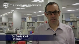 Thumbnail for entry David Kluth - Nephrology  - Research In A Nutshell - Queen's Medical Research Institute -17/07/2013