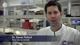 Thumbnail for entry Steve Pollard -STEM Cells & Cancer-Research In A Nutshell- MRC Institute of Genetic and Molecular Medicine-12/04/2014