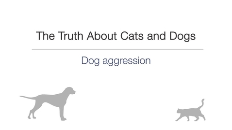 Thumbnail for entry Week 4 - Dog aggression