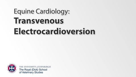 Thumbnail for entry Transvenous Electrocardioversion