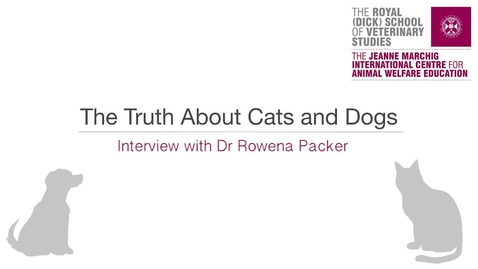 Thumbnail for entry Dog genetics - interview with Dr Rowena Packer
