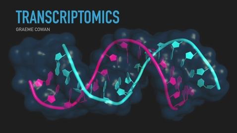 Thumbnail for entry Transcriptomics