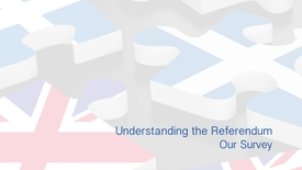 Thumbnail for entry Understanding the Referendum - Our survey