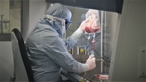 Thumbnail for entry Cell therapy spinout targets liver repair treatment