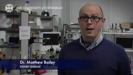 Thumbnail for entry Matt Bailey - Kidney Disease - Research In A Nutshell - Queen's Medical Research Institute -21/05/2015