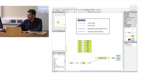 Thumbnail for entry 11. Practical Session: IFNB Pathway Description & Diagram