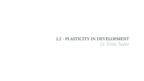 Clinical Psychology - Plasticity in development