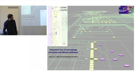 Thumbnail for entry 13. Framework Map of Macrophage Signalling Pathways (Lecture)