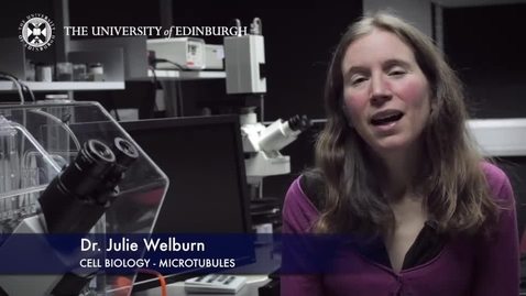 Thumbnail for entry Julie Welburn - Cell Biology- Microtubules - Research In A Nutshell - School of Biological Sciences -27/05/2015