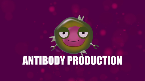 Thumbnail for entry Supercytes - How to say 'Antibody production'