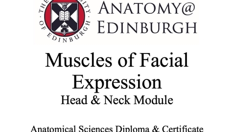 Thumbnail for entry Muscles of Facial Expression 2019