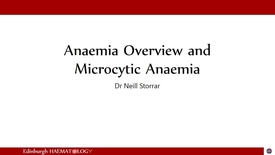 Thumbnail for entry Microcytic anaemia