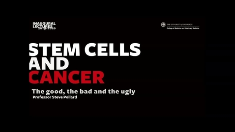 Thumbnail for entry Stem cells and cancer: the good, the bad and the ugly